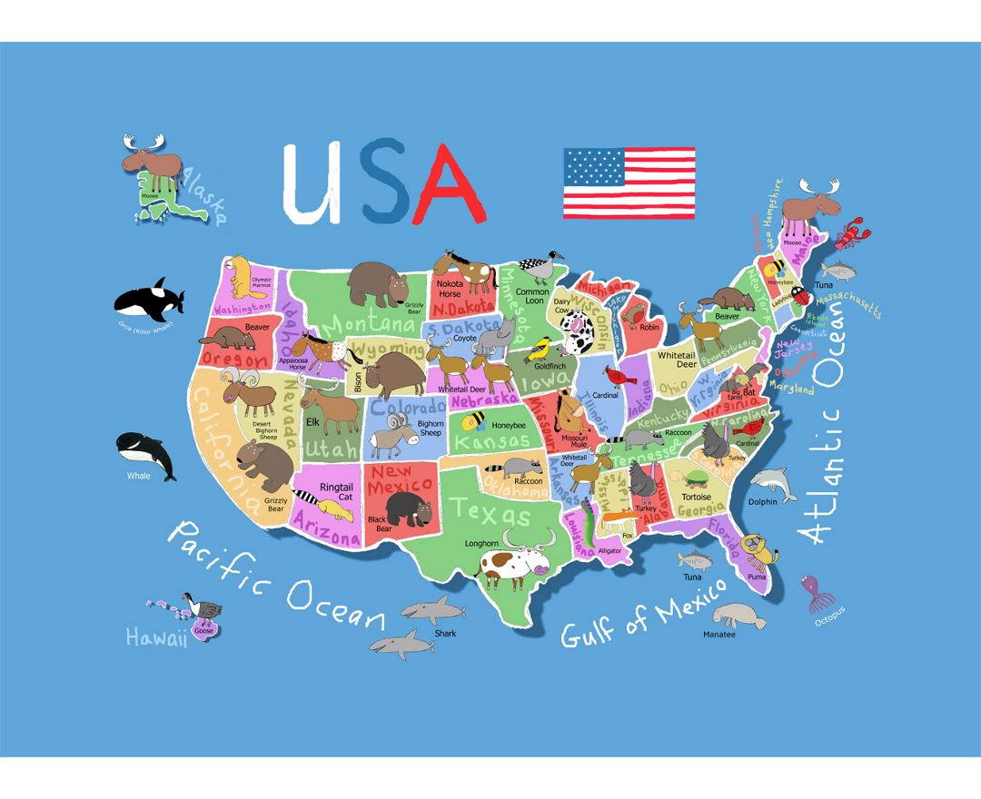 Maps Of The USA (the United States Of America)