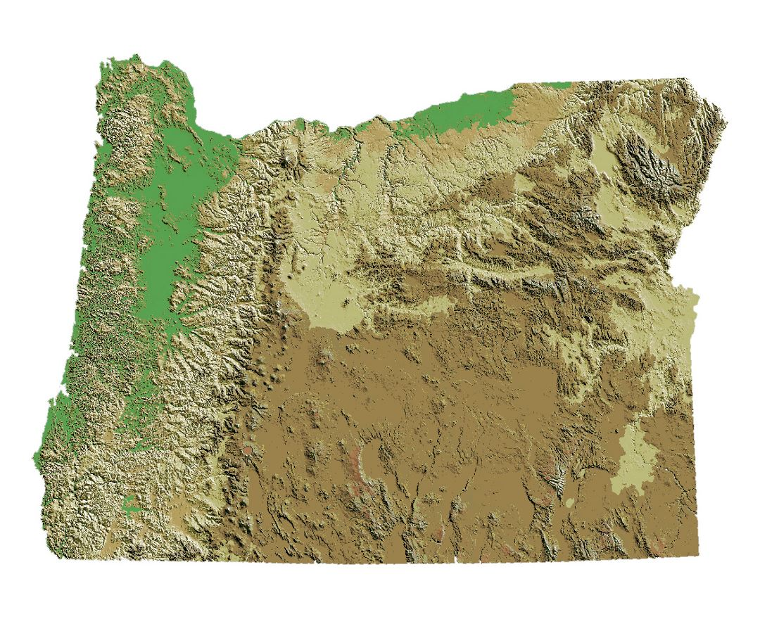 Detailed relief map of Oregon state